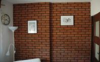 Ściana z cegły (płytki ceglaste ryflowane) i fotografie